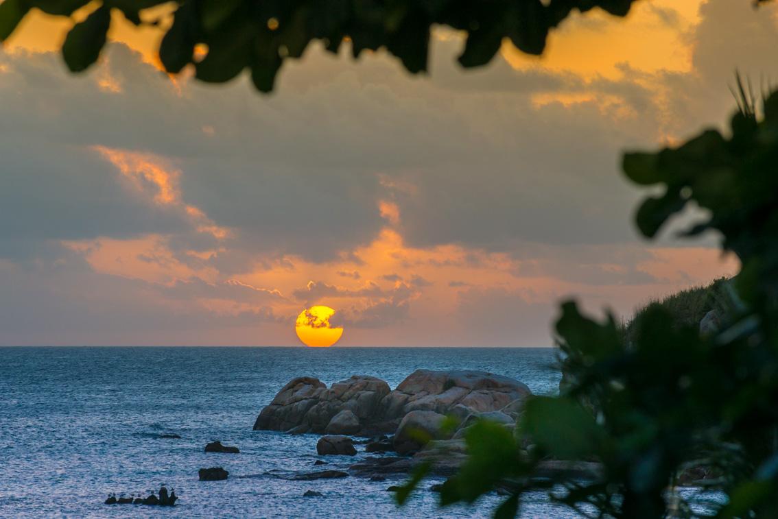 1787_misheye200516-170-_sunset