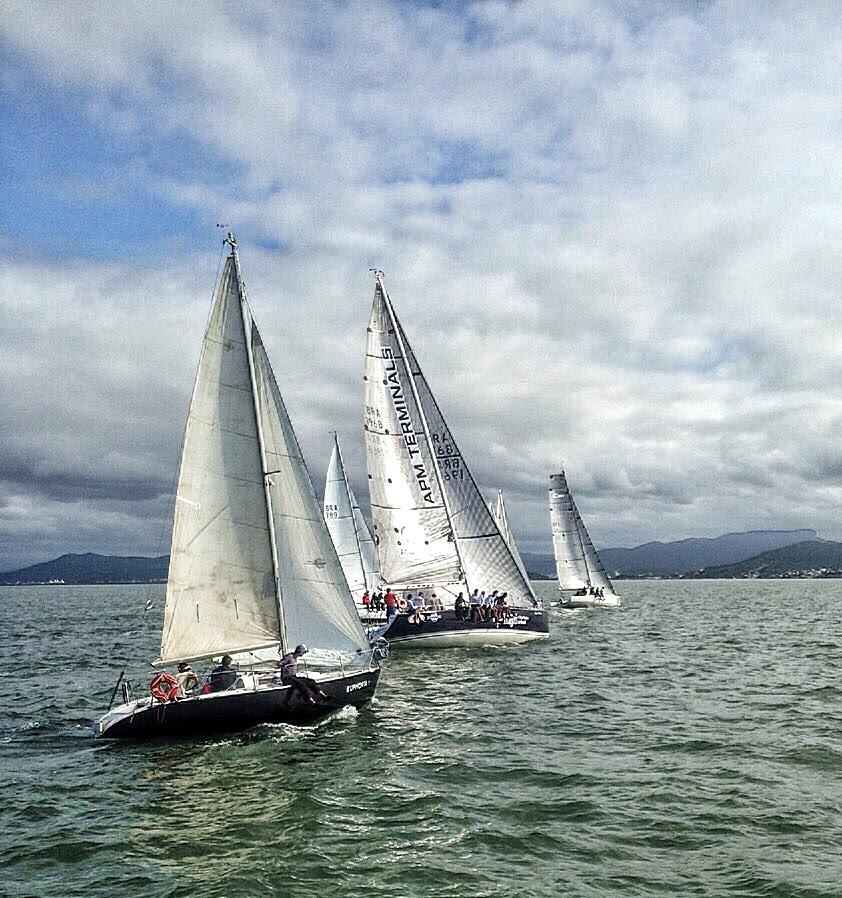 veleiros navegando em linha