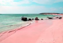 Bahamas Pink Sand Beach - boat shopping