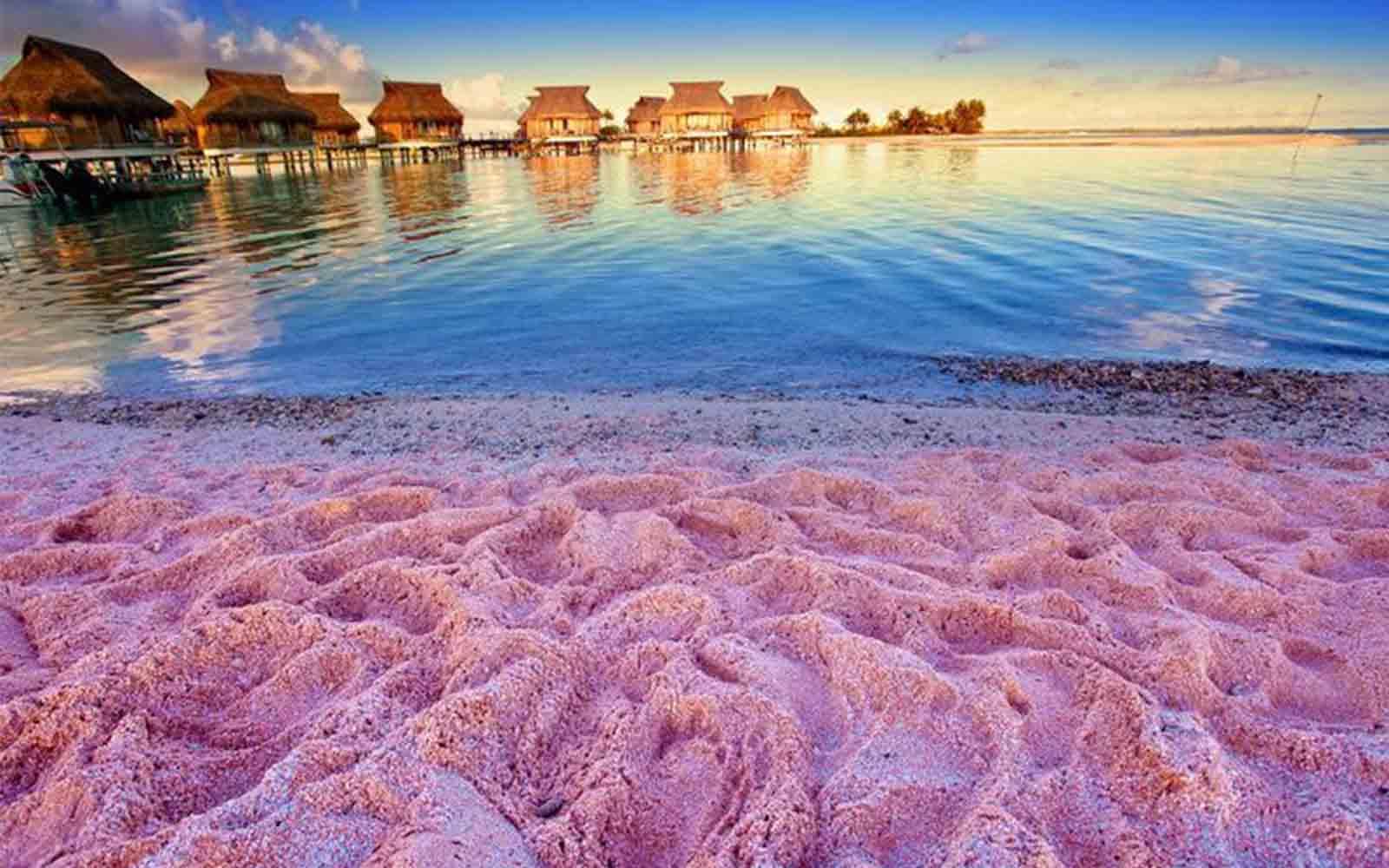 areia rosa nas Bahamas - boat shopping
