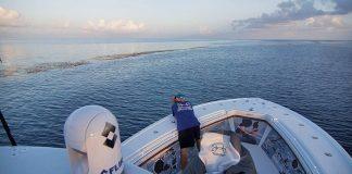 FLIR bate recorde de vendas no primeiro trimestre do ano-boatshopping