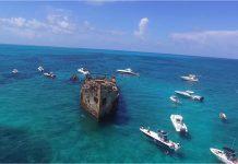 mergulho 4 - Boat Shopping