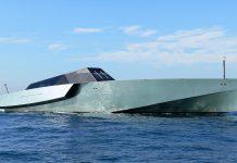Galeocerdo superiate - Boat Shopping