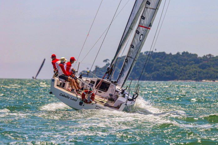 Caballo Loco (SP) (Daniel Mafra Veleiros da Ilha) - boat shopping