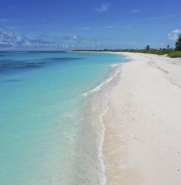 Seychelles cruzeiros 2021 - boat shopping